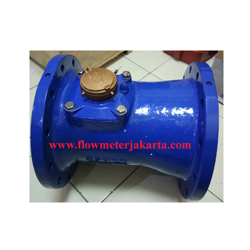 Water Meter BR 10 inch
