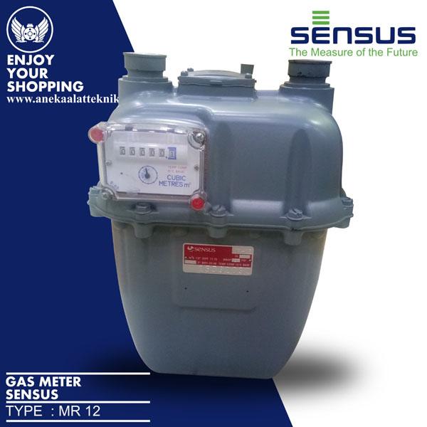 Sensus gas meter